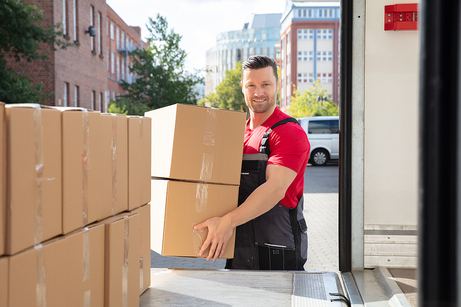 Premium removalist carrying heavy boxes
